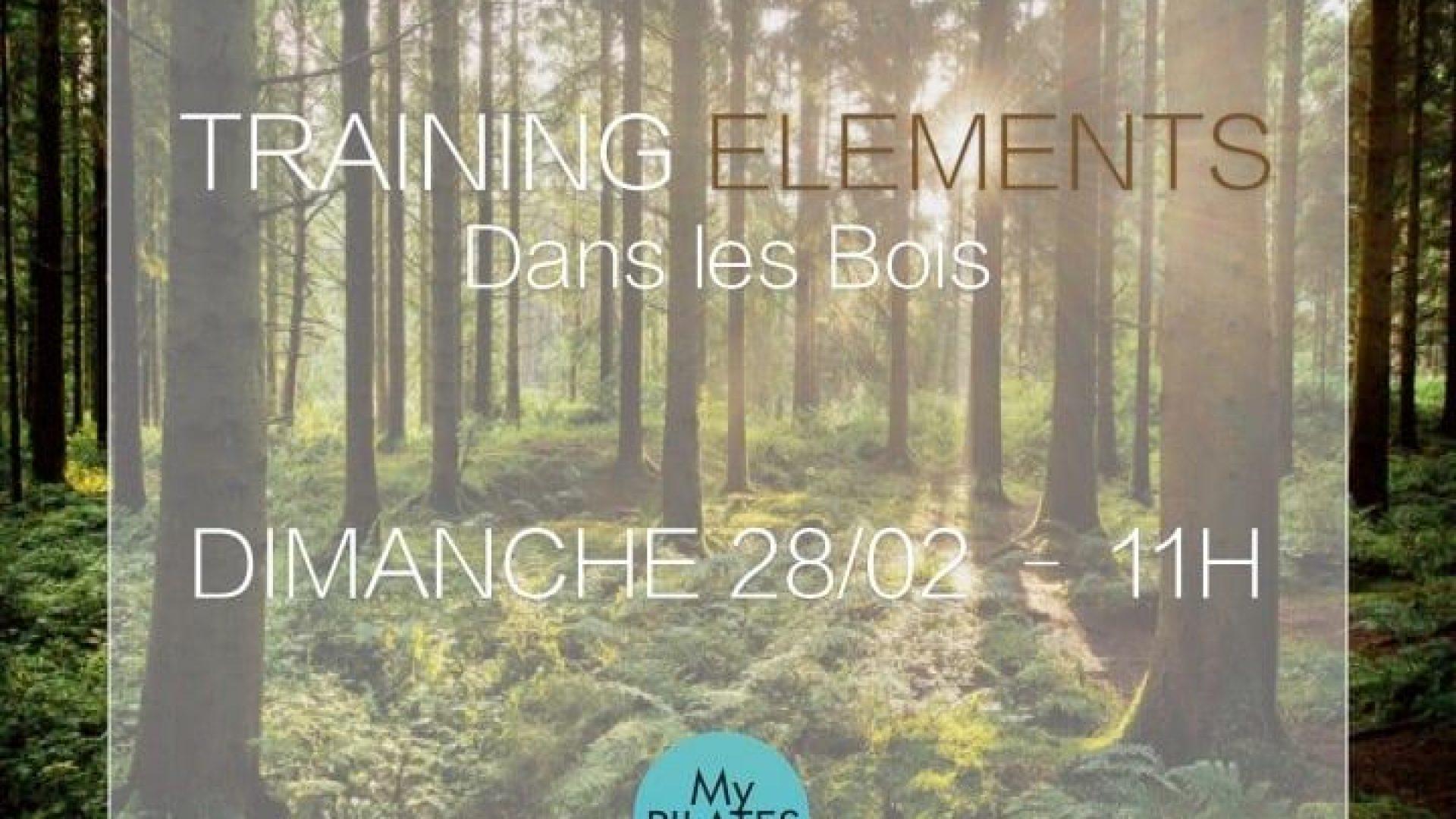 Training éléments dans les bois