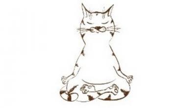 Chat zen